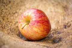 Manzana etiquetada orgánica Imágenes de archivo libres de regalías