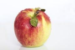 Manzana fresca Foto de archivo libre de regalías