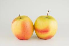 Manzana fresca grande Imagen de archivo libre de regalías
