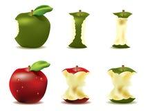 Manzana fresca Mouthwatering   ilustración del vector