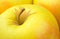 Manzana 'golden delicious' Fotos de archivo