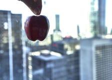Manzana grande en la ciudad foto de archivo