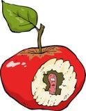 manzana Gusano-comida Imágenes de archivo libres de regalías