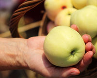 Manzana madura en una mano femenina Fotos de archivo