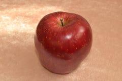 Manzana madura roja Fotos de archivo