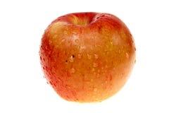 Manzana mojada aislada en blanco. Fotografía de archivo libre de regalías
