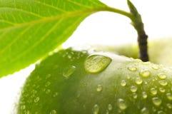 Manzana mojada verde fresca con la hoja Foto de archivo libre de regalías