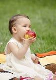 Manzana mordida de un niño Fotos de archivo