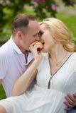 Manzana penetrante de los pares preciosos en comida campestre Fotografía de archivo libre de regalías