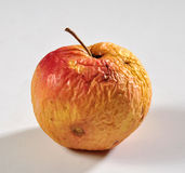 Manzana putrefacta Fotos de archivo