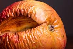 Manzana putrefacta Fotografía de archivo
