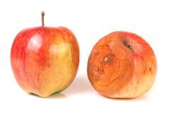 Manzana putrefacta y buena aislada en el fondo blanco Fotografía de archivo