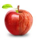 Manzana putrefacta y fresca aislada Fotos de archivo