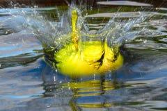 Manzana que cae en agua con un chapoteo imagen de archivo