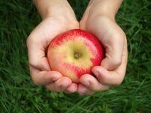Manzana red delicious Imagen de archivo