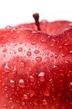 Manzana red delicious mojada Imagen de archivo libre de regalías