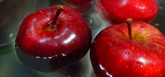 Manzana roja foto de archivo libre de regalías