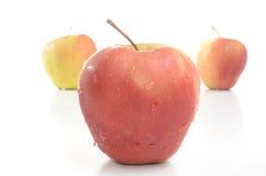 Manzana roja aislada Imagenes de archivo