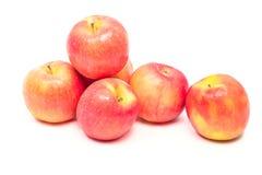 Manzana roja aislada Imagen de archivo libre de regalías