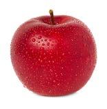 Manzana roja con descensos del agua Imágenes de archivo libres de regalías