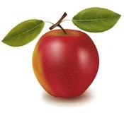 Manzana roja con dos hojas. Imagenes de archivo