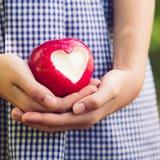 Manzana roja con forma del corazón imagenes de archivo