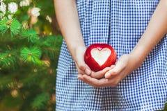 Manzana roja con forma del corazón Fotografía de archivo