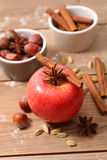Manzana roja con las especias Fotografía de archivo