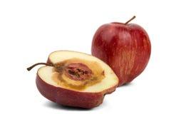 Manzana roja cortada putrefacta Fotografía de archivo libre de regalías