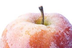 Manzana roja cubierta con escarcha Fotografía de archivo libre de regalías