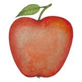 Manzana roja de la acuarela Imagen de archivo libre de regalías