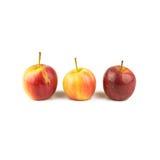 Manzana roja del amarillo tres aislada en el fondo blanco Imágenes de archivo libres de regalías