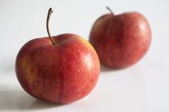 Manzana roja en blanco Fotografía de archivo libre de regalías