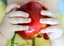 Manzana roja en el child& x27; manos de s Foto de archivo