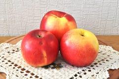 Manzana roja en el vector fotos de archivo libres de regalías