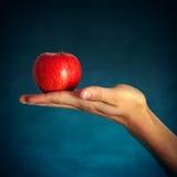 Manzana roja en la mano Imagen de archivo libre de regalías