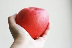 Manzana roja en una mano Foto de archivo libre de regalías