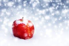 Manzana roja grande en la nieve Fotos de archivo