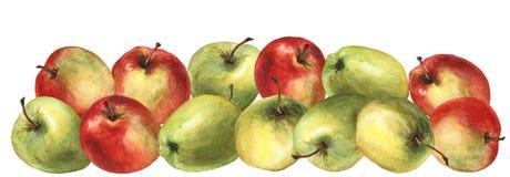 Manzana roja y verde Ejemplo de la pintura de la mano de la acuarela Foto de archivo