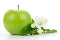 Manzana verde con las flores Foto de archivo libre de regalías