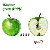 Manzana verde de la acuarela Foto de archivo