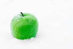 Manzana verde en la nieve Fotos de archivo libres de regalías