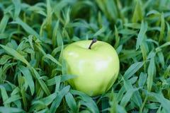 Manzana verde que miente en hierba fresca Imagenes de archivo