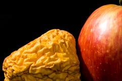 Manzana vieja y de la violación Imagen de archivo