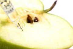 Manzana y jeringuilla verdes Imagen de archivo libre de regalías