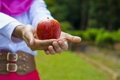 Manzana y mujer rojas Imagenes de archivo