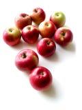 Manzanas 1 Imágenes de archivo libres de regalías