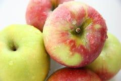 Manzanas. Fotos de archivo libres de regalías
