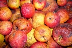 Manzanas Fotografía de archivo