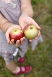 Manzanas 3 Imagen de archivo libre de regalías